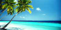 Playa exótica Caribe, República Dominicana.