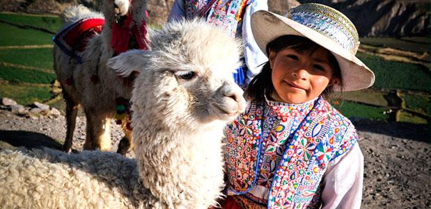 Alpaca y chica peruana en la sierra de perú
