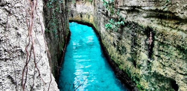 Los parques en la riviera maya