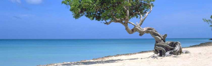 Punta Cana -Republica Dominicana 4*,Caribe,Punta Cana,Republica Dominicana