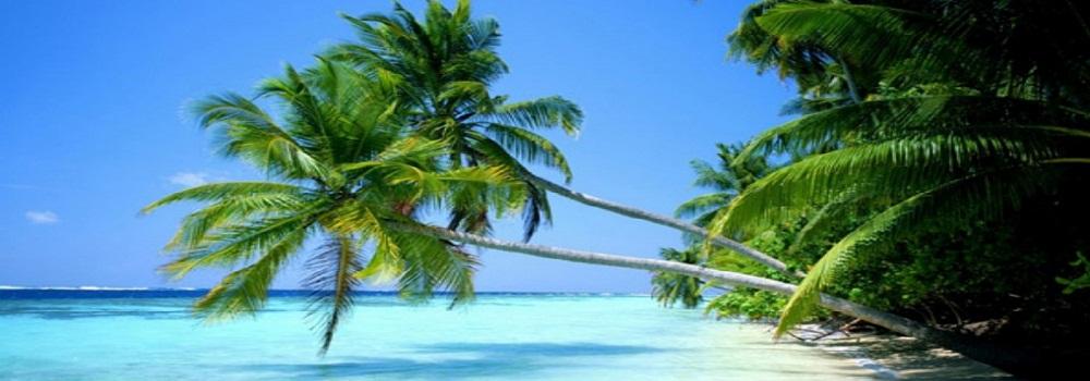 Última hora Punta Cana hoteles 5*****