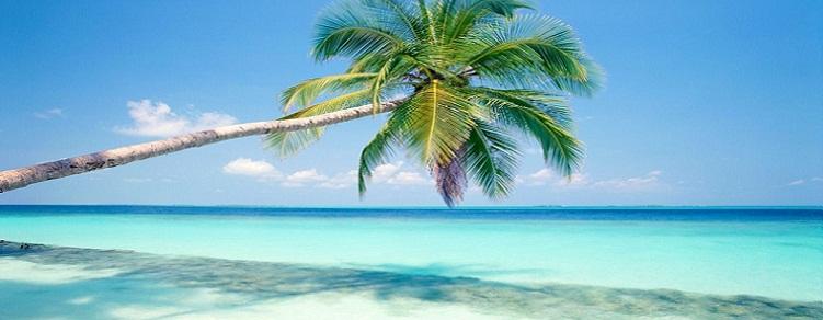 Combinado Nueva York y Punta Cana