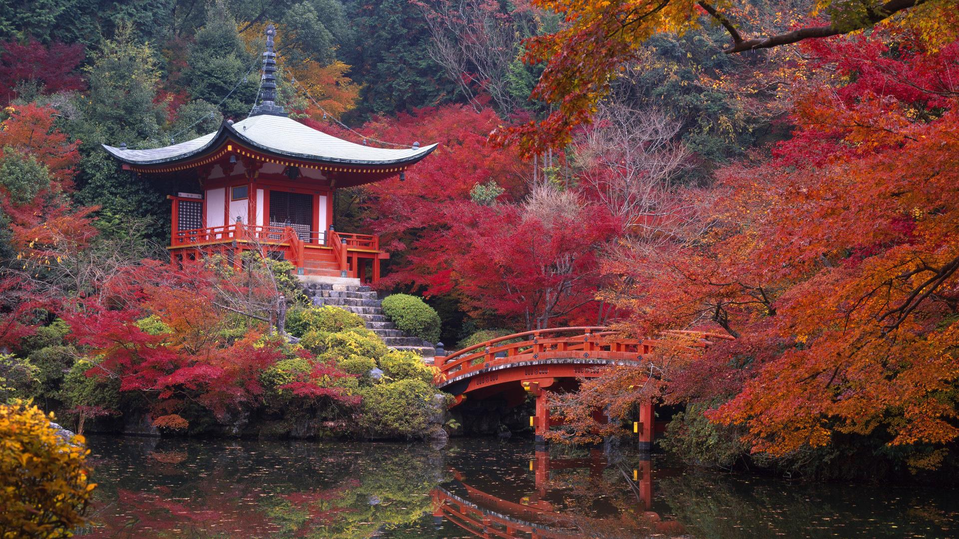 Japón y Bali