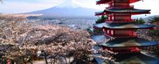 Oferta de viaje barato Japón