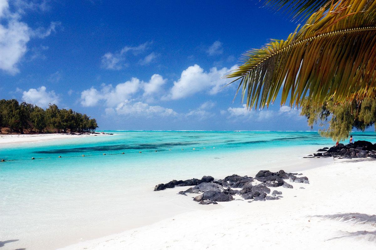 Vuelos+Hotel Un viaje al paraiso