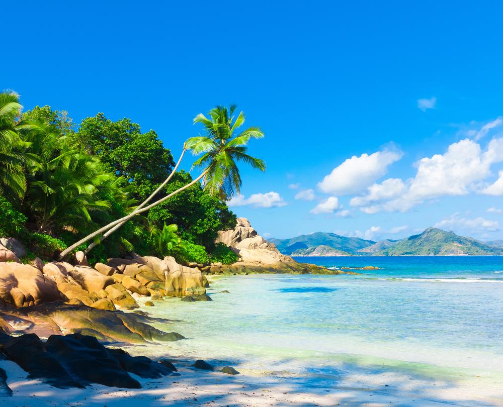Viaje a Punta Cana 9 días Reserva tu viaje