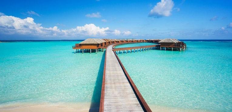 Japón y Maldivas