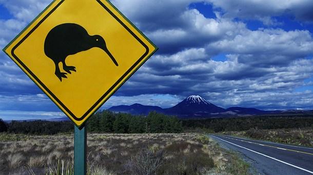 Circuito Nueva Zelanda