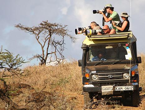 Safari especial Tanzania Sur