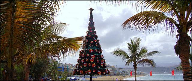 Oferta Fin de Año en Canarias