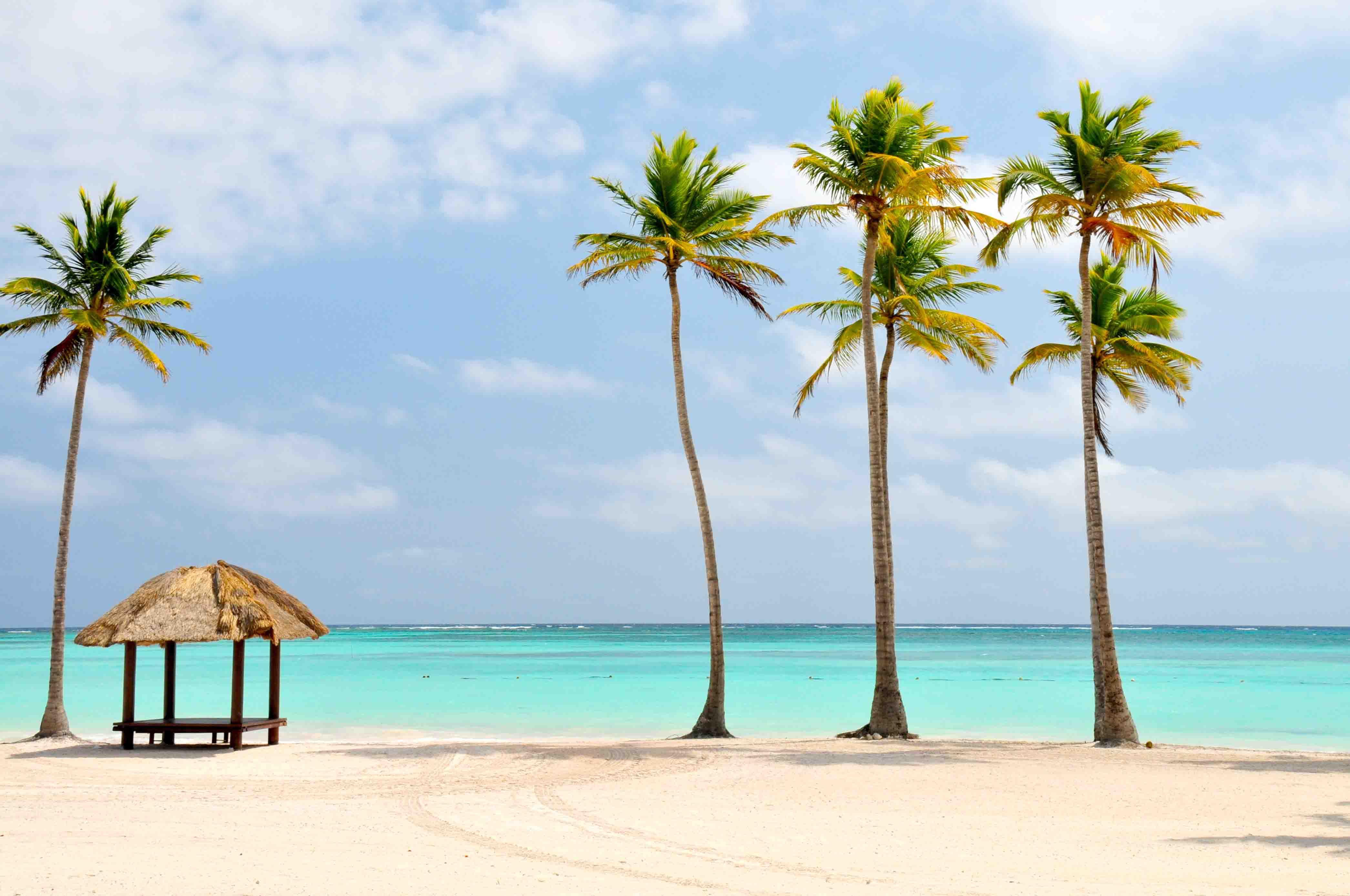 Viaje Nueva York Punta Cana