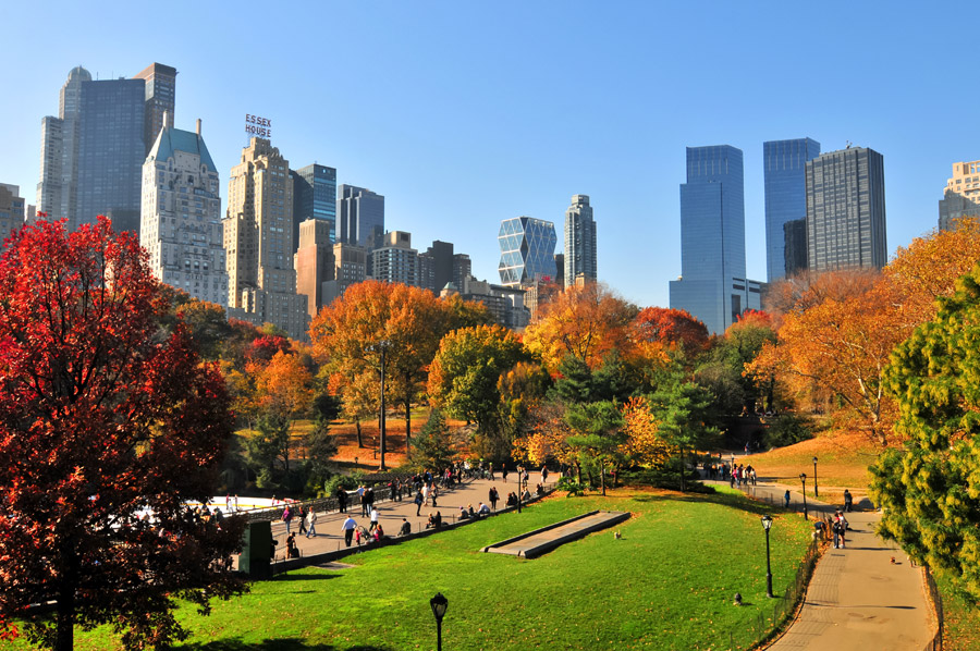Luna de miel Nueva York