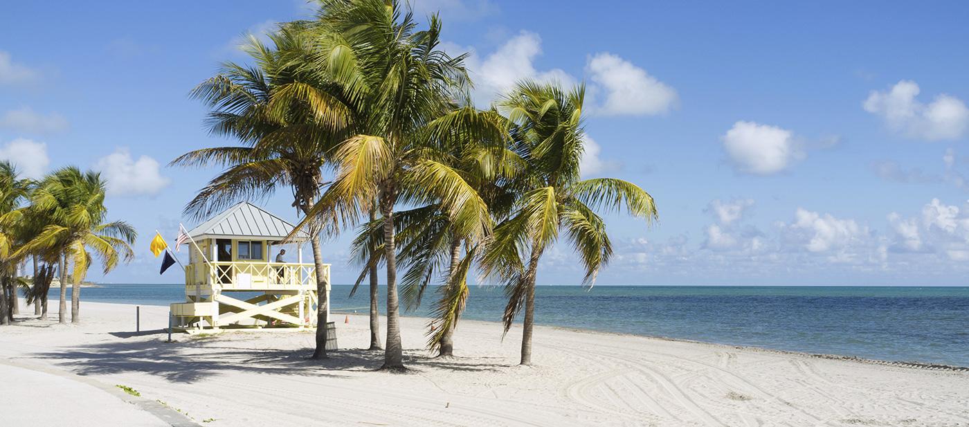oferta miami beach