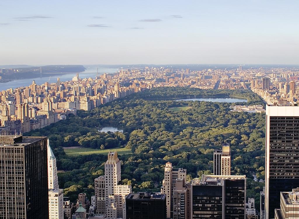 Combinado Nueva York