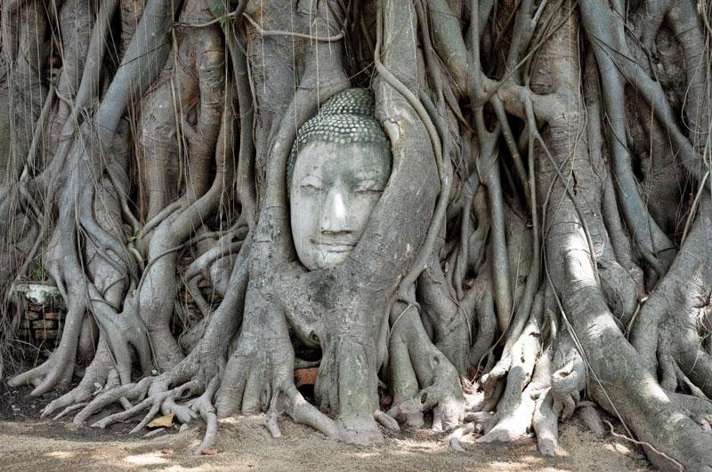 Viajes al Reino de Siam