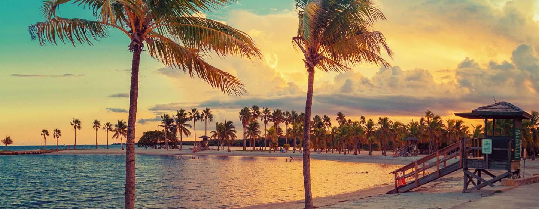 Miami y Crucero por Bahamas