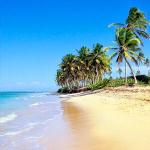Punta cana todo incluido desde 690 felicesvacaciones - Viaje a zanzibar todo incluido ...