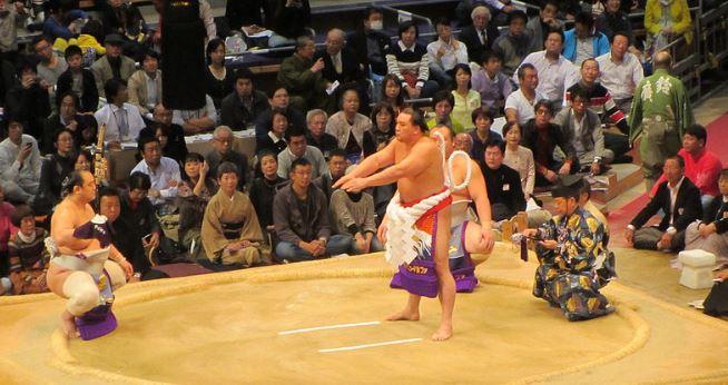 Sumo Japonés